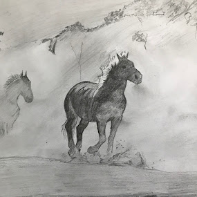 In the Morning  by Anika McFarland - Drawing All Drawing ( in the morning, horses, horse drawing, morning fog, drawing )