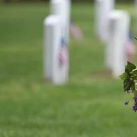 Bringing Flowers to the Gravesite  by Lorraine D.  Heaney - People Street & Candids