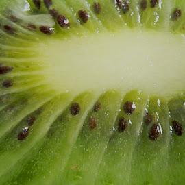 Kiwi slice by Ana Paula Filipe - Food & Drink Fruits & Vegetables ( interior, fruit, green, kiwi, slice )