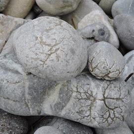 by Biljana Nikolic - Nature Up Close Rock & Stone