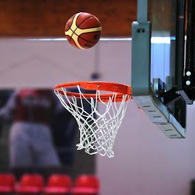 Suspended by Alessandra Antonini - Sports & Fitness Basketball ( basketball, red, basket, sports, sport )