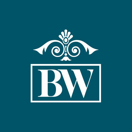 Android aplikacija BW eServices na Android Srbija