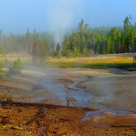 Fantasia by Marilyn Kircus - Landscapes Caves & Formations ( volcanic features, fog, geysers, sulfur, yellowstone np, vents, steam )