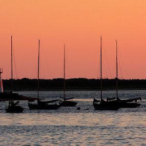 Sunrise, Nantucket Harbor by Robert Burger - Landscapes Waterscapes