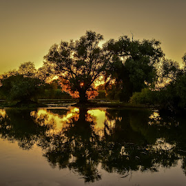 Sunset in Danube Delta, Romania by Magda Creosteanu - Landscapes Waterscapes ( water, danube delta, sunset, peace, romania )
