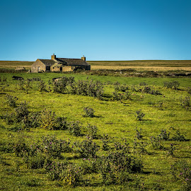 Sotland by George Nichols - Landscapes Prairies, Meadows & Fields ( field, scotland, uk, scottish manor, rural )