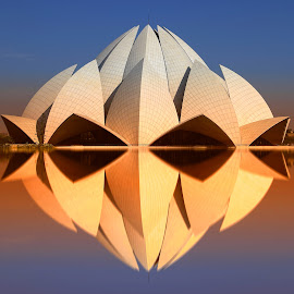 lotus temple dehli by Christian Heitz - Buildings & Architecture Public & Historical