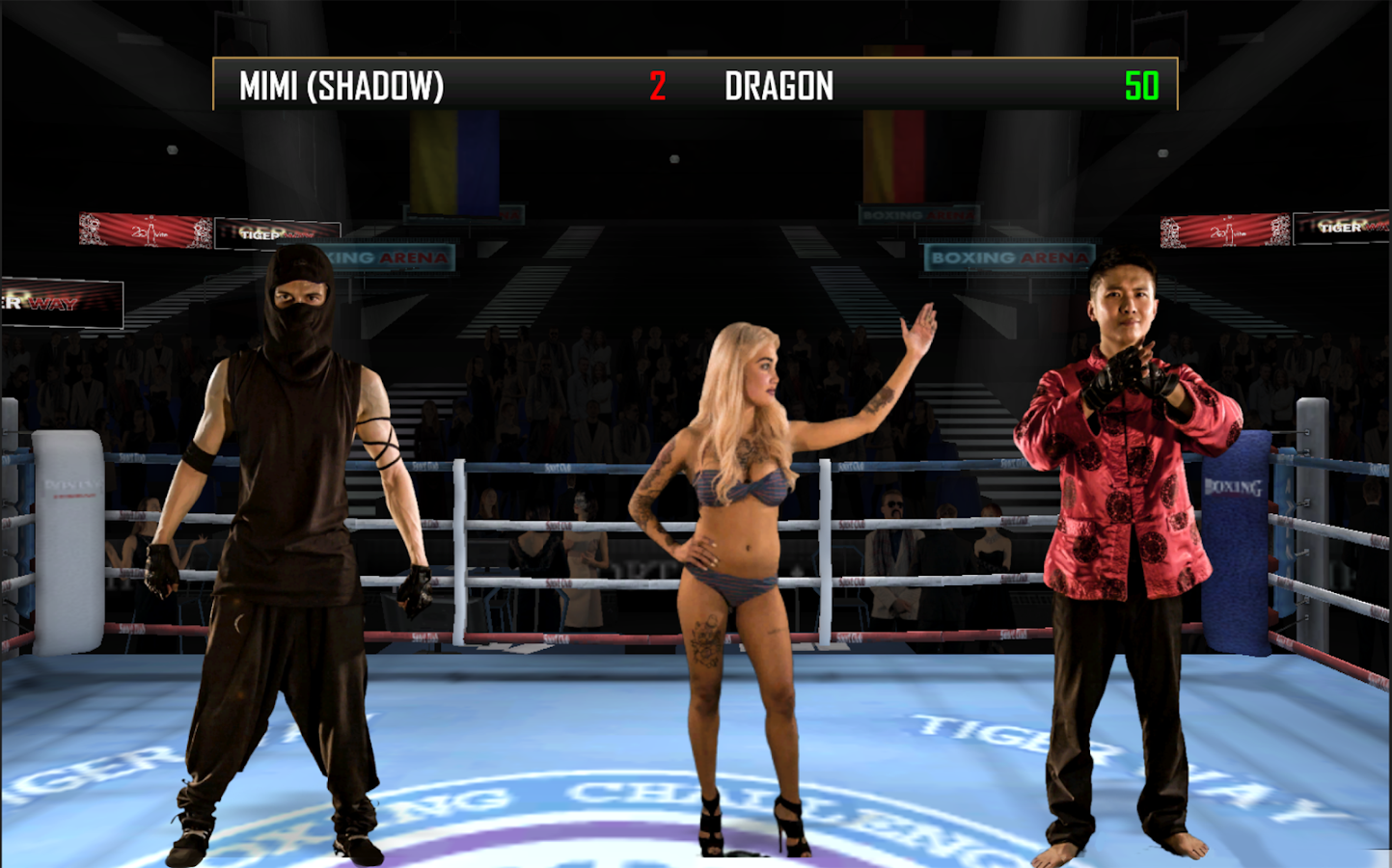 Boxing Combat Screenshot 5