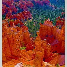 by Morris Kleyman - Landscapes Mountains & Hills (  )