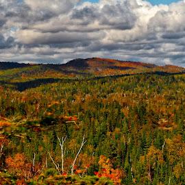 Northern Minnesota by Tom Davison - Landscapes Prairies, Meadows & Fields (  )