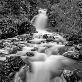 Cascada en Arinsal, Andorra by Martín Silva Cosentino - Landscapes Waterscapes ( arboles, cascada, la massana, naturaleza, arinsal, riopiedras, primavera, long exposure, paisaje, agua, andorra,  )