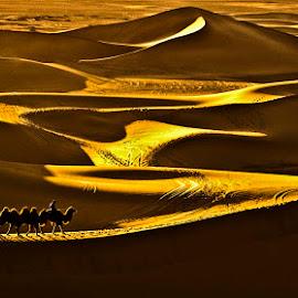 Crossing Desert by Goh Poh Leong - Landscapes Deserts