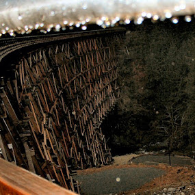 Kinsol Trestle, Duncan BC by Lynette Phipps - Buildings & Architecture Bridges & Suspended Structures ( pwcbridges )