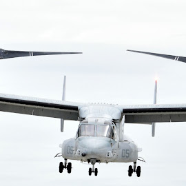 MV-22 Osprey by Deborah Lucia - Transportation Airplanes ( helicopter, aircraft, military, osprey )