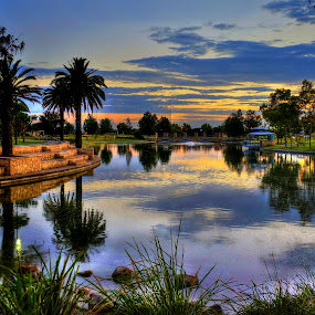 Sunrise in the park Perth WA by Loredana  Smith - City,  Street & Park  City Parks