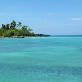Dominican Republic by Emma Thompson - Landscapes Beaches ( blue, ocean, paradise, caribbean )