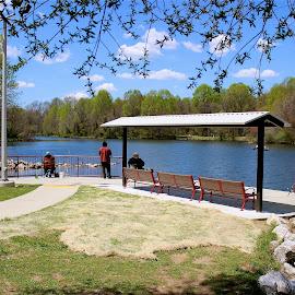 Spring day. by Peter DiMarco - City,  Street & Park  Vistas ( vistas, park, waterscape, parks, view )
