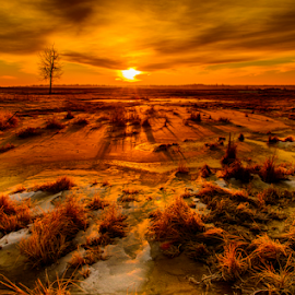 by Joseph Law - Landscapes Sunsets & Sunrises