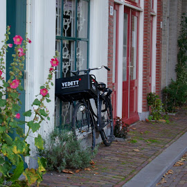 wating for a ride by Nico Kranenburg - Transportation Bicycles ( home, street, flowers, bycycle )
