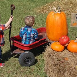 Pumpkin Hunting 2 by Philip Molyneux - Babies & Children Children Candids (  )
