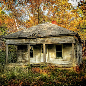 Old Home In The Woods by T Sco - Buildings & Architecture Decaying & Abandoned ( home, building, deteriorate, autumn, fall, trees, forest, architecture, woods, country, abandoned )