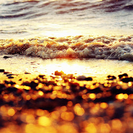 by Luci Petro - Nature Up Close Water