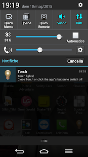 Torch - screenshot