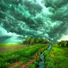 Transformation by Phil Koch - Landscapes Weather ( vertical, farmland, yellow, storm, leaves, love, sky, nature, tree, autumn, weather, perspective, flowers, light, wind, orange, twilight, art, agriculture, horizon, portrait, environment, dawn, season, serene, trees, lines, inspirational, natural light, wisconsin, ray, chaser, landscape, phil koch, spring, sun, photography, farm, severe, horizons, inspired, rain, clouds, office, park, green, scenic, morning, shadows, field, red, blue, sunset, amber, peace, meadow, summer, beam, earth, sunrise, garden )