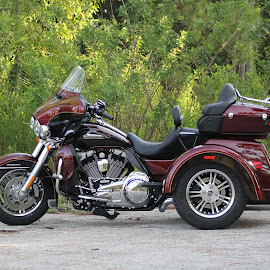 TRIGLIDE by Patti Westberry - Transportation Motorcycles ( harley davidson, harley, triglide, motor cycle, jims bike )