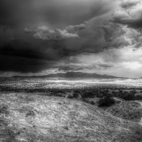 Where the Streets Have No Name by Roch Hart - Landscapes Deserts ( desert, high desert clouds sky storms new mexico nm sw southwest bw black and white )