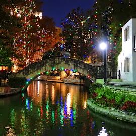 San Antonio Riverwalk at Christmas by Cathy Hood - Public Holidays Christmas