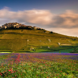 Castelluccio by Roberto Melotti - Landscapes Prairies, Meadows & Fields ( clouds, hill, hills, roberto melotti, flowering, blooming, colors, nikon d810, bloom, norcia, blossoming, castelluccio, blossom, sky, village, castelluccio di norcia, flowers, italy )