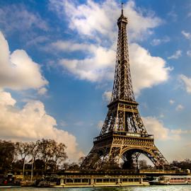 by Paul Scullion - Buildings & Architecture Statues & Monuments ( landmark, paris, eiffel tower, france, landscape, river )