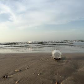 by Dr .Ghanshyam Patel - Landscapes Beaches