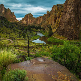 Gray Sky Day by Judi Kubes - Landscapes Mountains & Hills ( clouds, water, jagged, mountains, grass, trees, gray, rocks, river,  )
