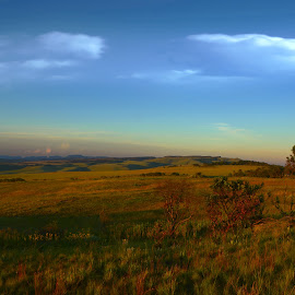 Landscape in Mpumalanga, SA by Danette de Klerk - Landscapes Prairies, Meadows & Fields ( sky, nature, grass, clouds, trees, landscape )