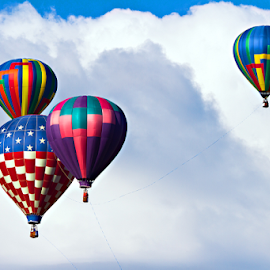 HOT AIR BALLOONS IN THE CLOUDS by David Dise - Transportation Other