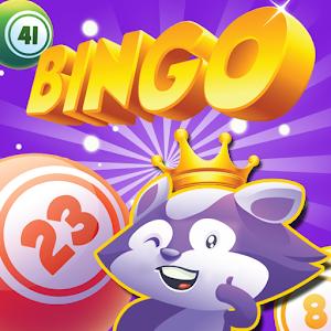 Cover art Bingo Raccoon