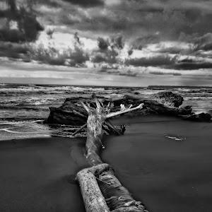 cahuita-negra-beach4 (1 of 1).jpg