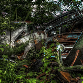 Pile of Junk by Chris Cavallo - Transportation Automobiles ( relics, old car, maine, rusty, rust, decay, junk, abandoned )
