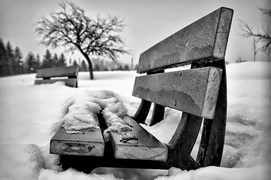 by Jean Verret - City,  Street & Park  City Parks ( pwcbenches )
