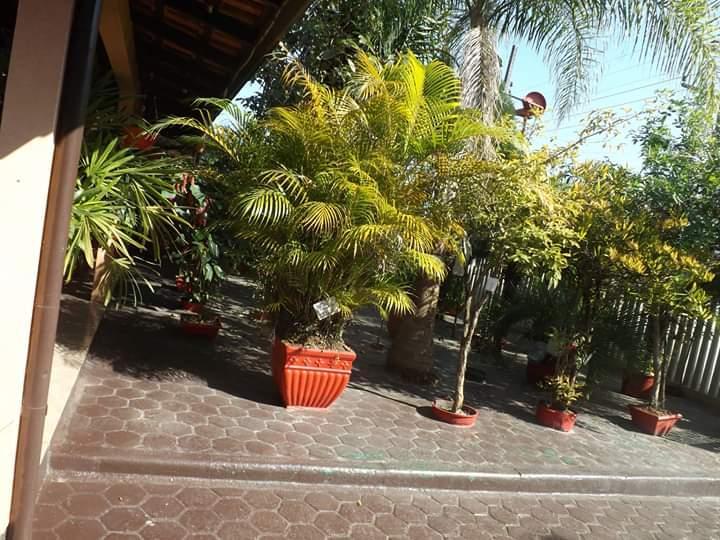Casa com 5 dormitórios à venda, 220 m² por R$ 550.000 - Perola - Itapoá/SC