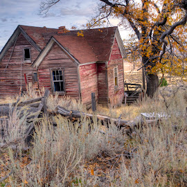 Abandoned Dream by John Larson - Buildings & Architecture Decaying & Abandoned ( fence, mountains, tree, house, sage brush )