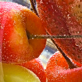 { Seltzer Water and Fresh Picked Fruit from our gardens ~ 7 July }  by Jeffrey Lee - Food & Drink Alcohol & Drinks ( { seltzer water and fresh picked fruit from our gardens ~ 7 july } )
