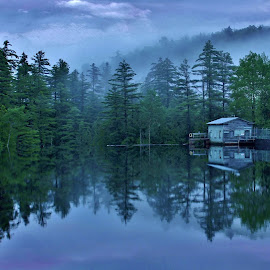 A Foggy Evening by Gary Latone - Landscapes Forests