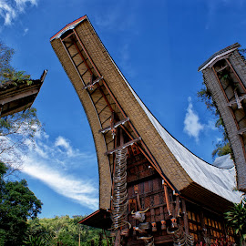 tongkonan and alang by Hartono Wijaya  - Buildings & Architecture Homes ( toraja, ethnic, tribe, carving, tourism, architecture, cultural heritage, sculpture, barn, cremony, indonesia, homes, travel photography, culture, custom )