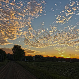 Back Road Sunset  by Braidon Everts - Landscapes Sunsets & Sunrises ( canon, michigan, sunset, landscape, dirt )