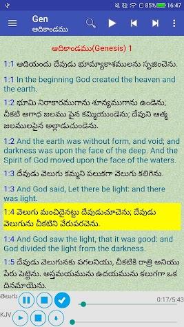 Telugu English Audio Bible తెలుగు ఇంగ్లీష్ బైబిల్ Screenshot