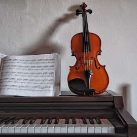 by Luca Piccini Basile - Artistic Objects Musical Instruments