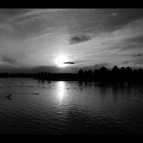 Sunset in B/W by Sassine El Nabbout - Landscapes Waterscapes ( b/w, mono-tone, b&w, black and white, sunsets, australia, b and w, highlands lake, victoria, craigieburn, landscape, monotone )